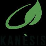 Hemprinted kanesis v 1 e1603544624299