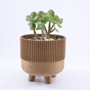Hemprinted cardboard jar